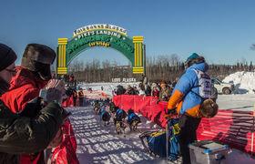 Iditarod 2017 4   18x24