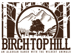 Birch-Top Hill Ranch Logo