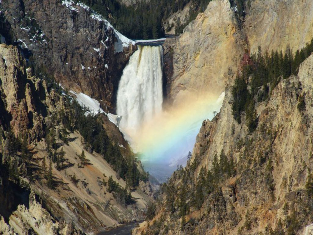 Yellowstone National Park Tour Guide Job