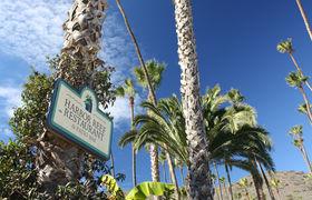 Harbor reef restaurant palms