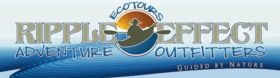 Ripple Effect Ecotours Logo