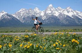 Backroads bike